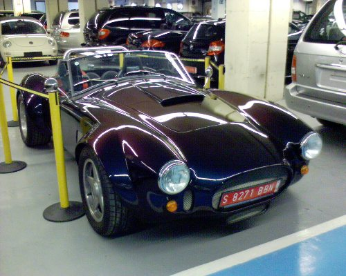 coche-1_peq.JPG